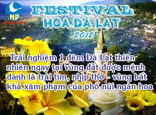 Festival Hoa & Doi Cu